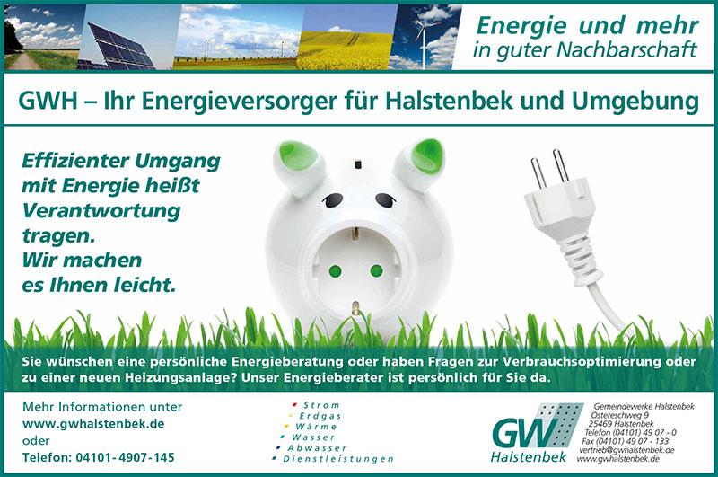 Plakat GW Halstenbek Energieberatung